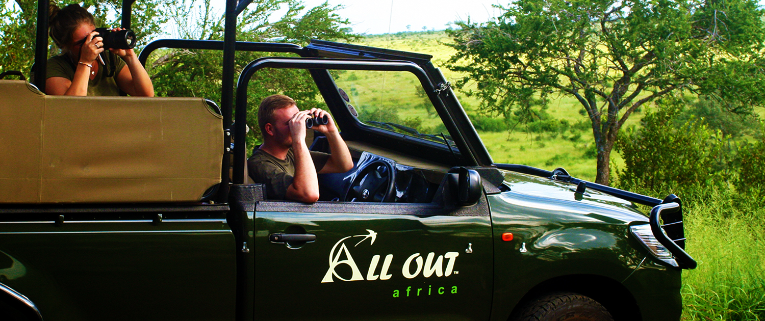 Safaris in Kruger National Park