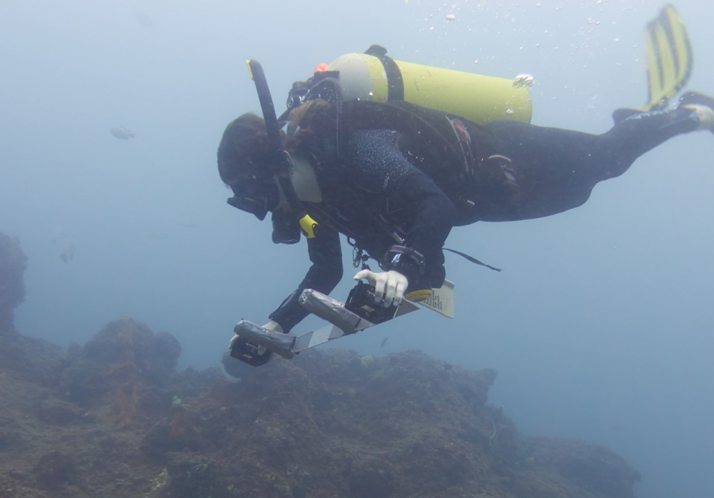 Divers monitoring the seafloor